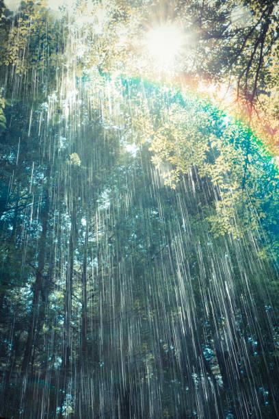 regenbogen sonne und regen - sonnendusche stock-fotos und bilder