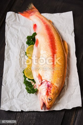 Rainbow trout on white paper, preparation