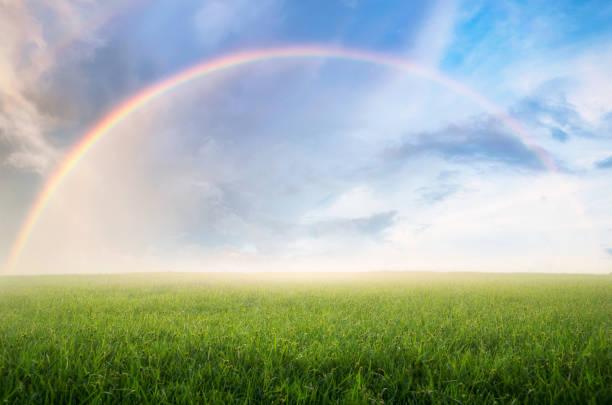 arco-íris com prado. - arco íris - fotografias e filmes do acervo