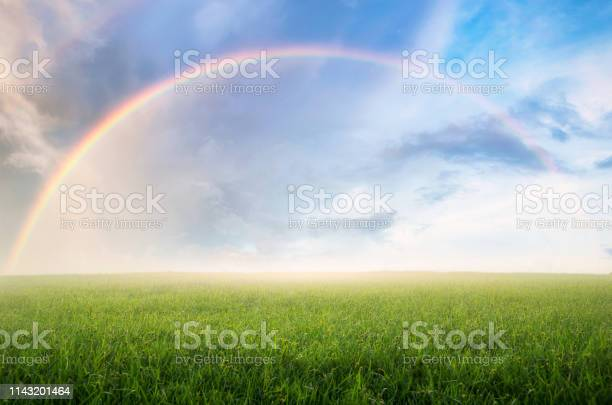 Photo of Rainbow with meadow.