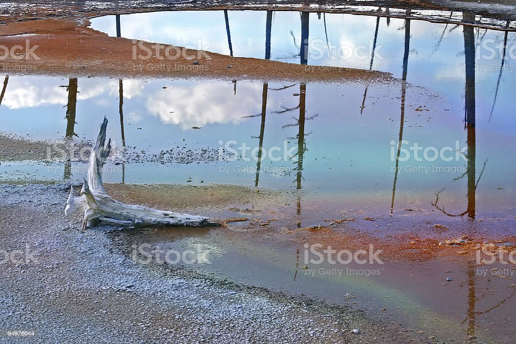 Rainbow-colored Geyser Pool & Driftwood royalty-free stock photo