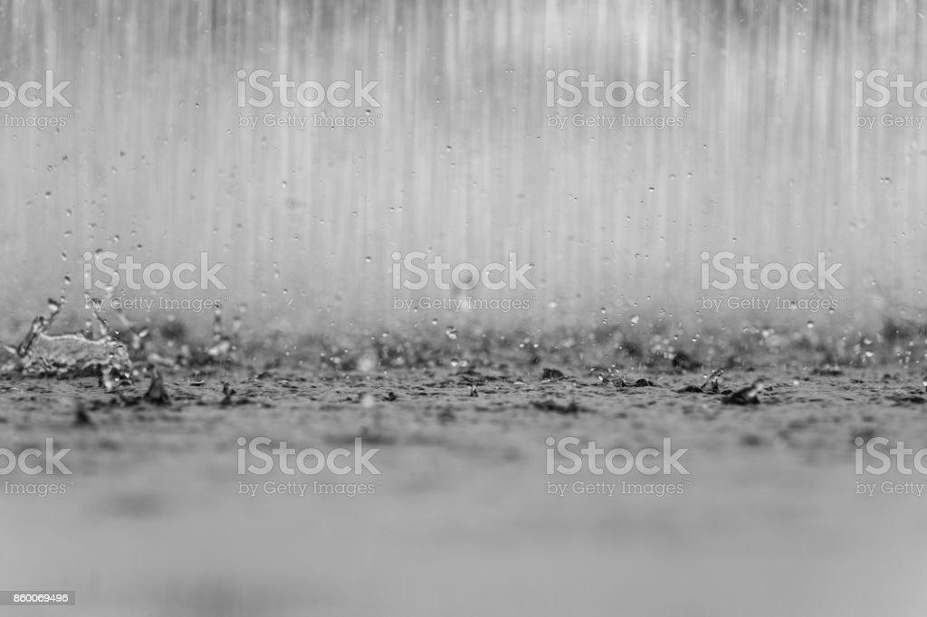 raindrop on the ground stock photo