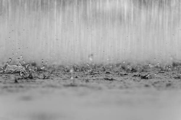 raindrop on the ground - rain stock photos and pictures