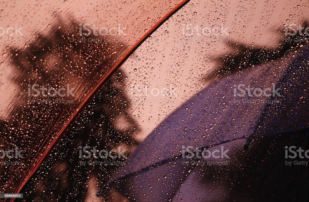Дождевая капля рисунком из-под зонтик, кривой, мелкий глубины резкости Стоковые фото Стоковая фотография