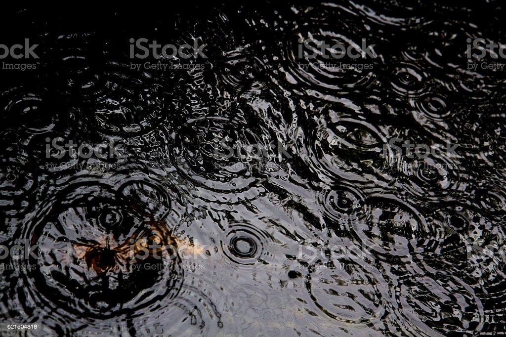 Raindrops on a pond photo libre de droits