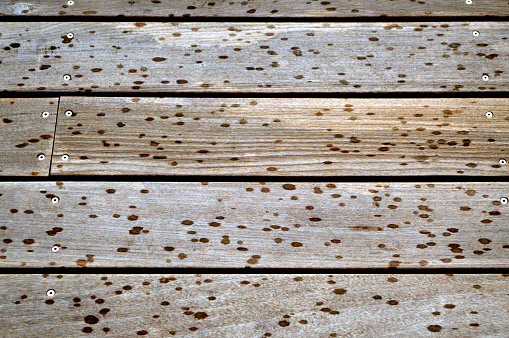 Wet planks of hard wood patio made of ipe.