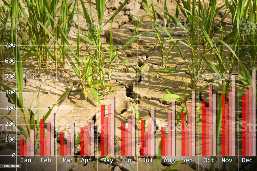 Rainfall chart concept image with a infertile land on background - concept image stock photo