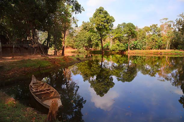 Rainforest in Koh Kher national park stock photo