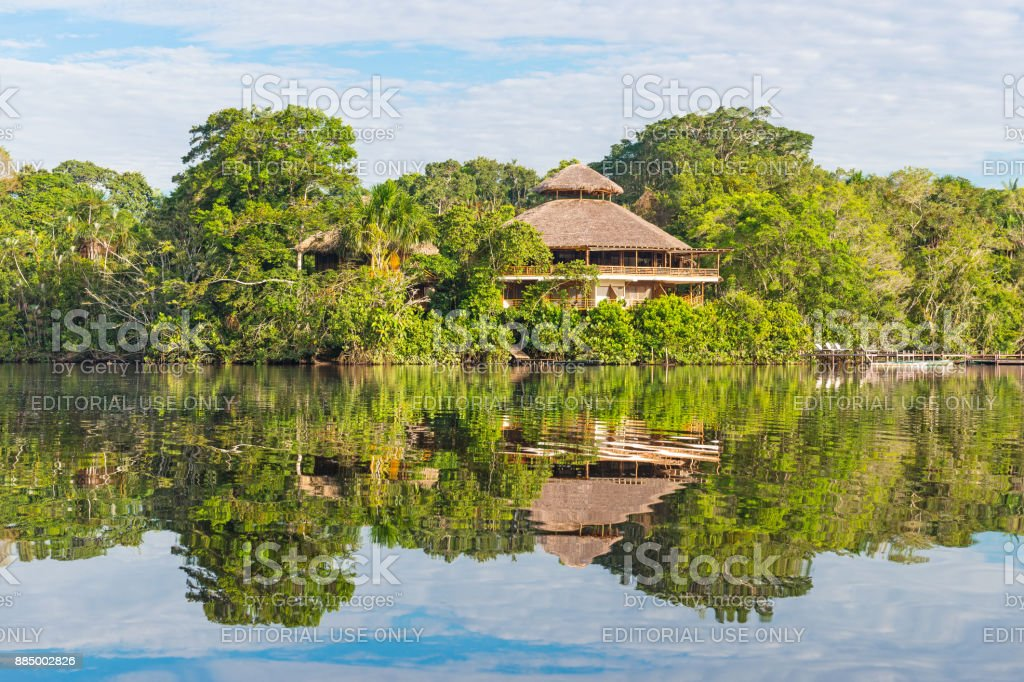 Rainforest Lodge stock photo