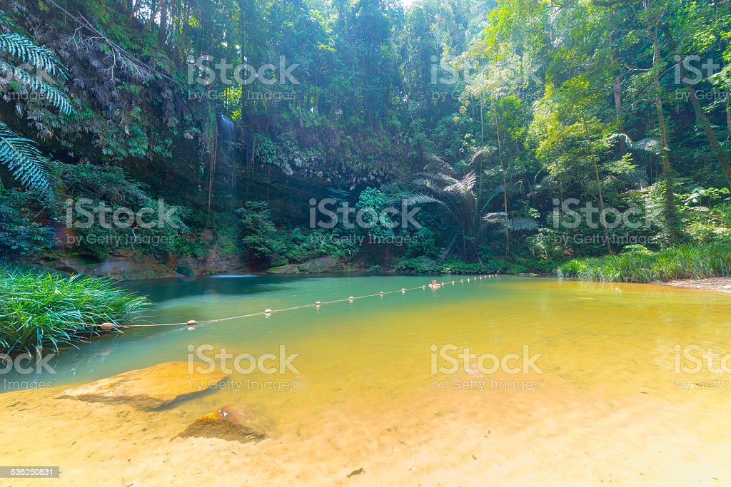 Rainforest natural pool and waterfall stock photo