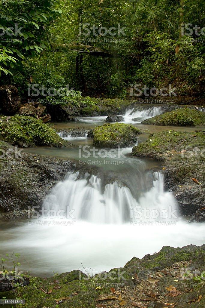Rainforest Waterfall royalty-free stock photo