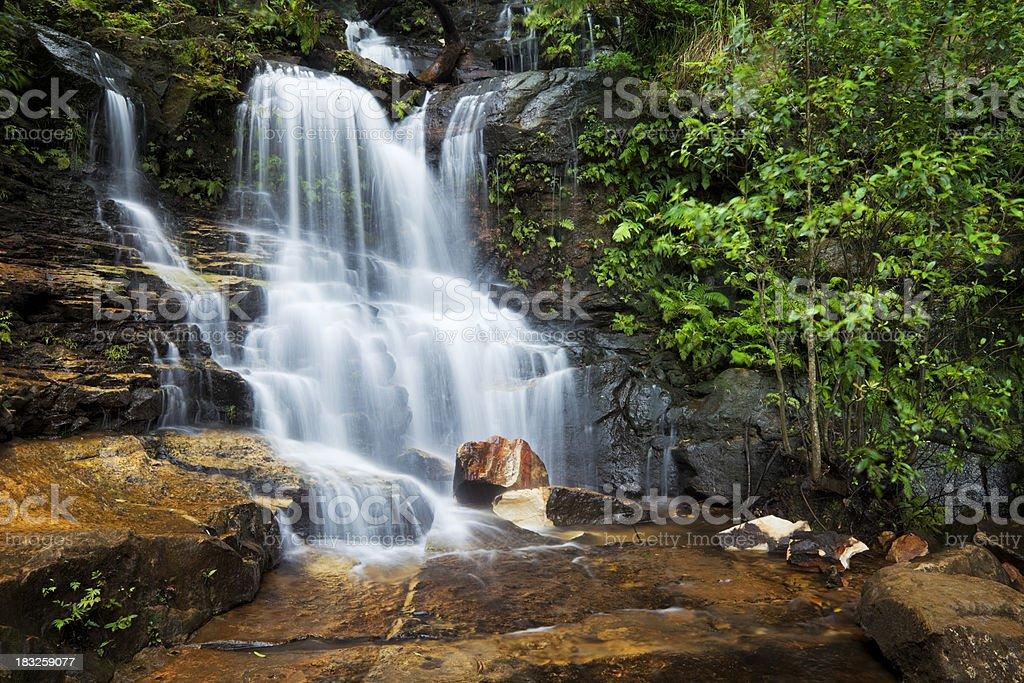 Rainforest waterfalls, Empress Falls, Blue Mountains, New South Wales, Australia stock photo