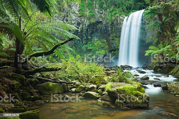 Тропический Водопады Водопад Хоптаун Фолс Огромный Otway Нп Виктория Австралия — стоковые фотографии и другие картинки Great Otway National Park