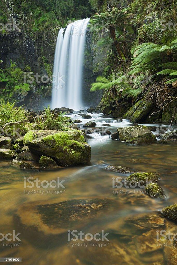 Rainforest waterfalls, Hopetoun Falls, Great Otway NP, Victoria, Australia royalty-free stock photo