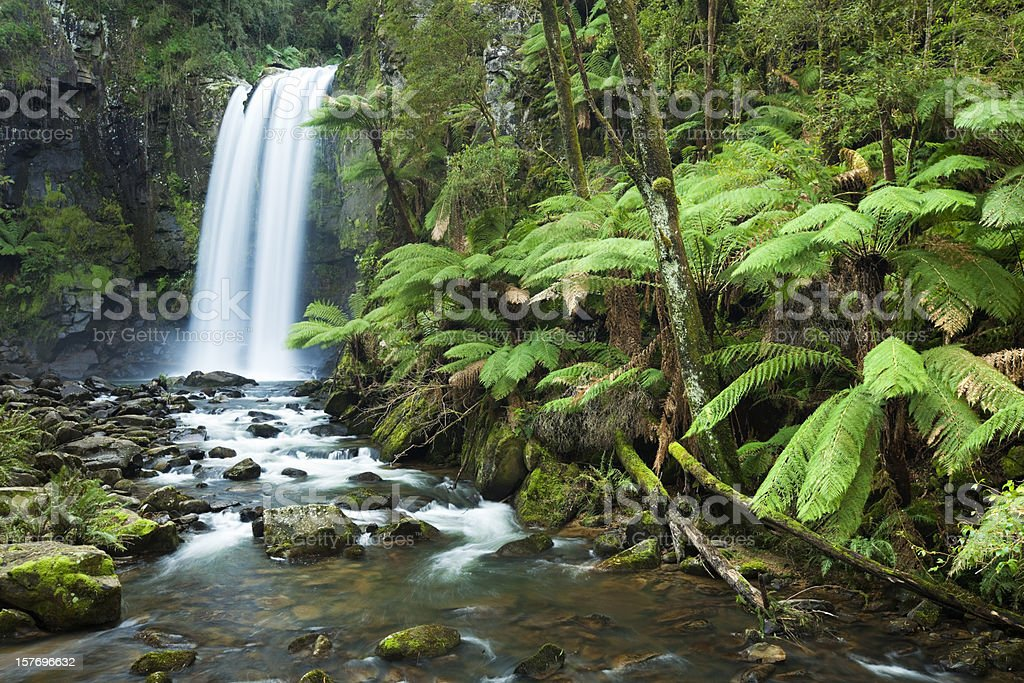 Rainforest waterfalls, Hopetoun Falls, Great Otway NP, Victoria, Australia stock photo