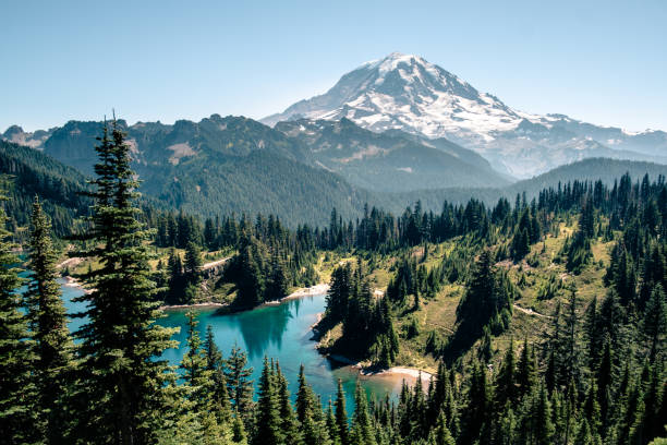 Rainier National Park Lakes and upfront views of Mt. Rainier washington state stock pictures, royalty-free photos & images