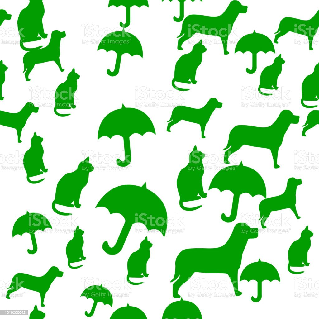 Raining Cats And Dogs Stock Photo Download Image Now Istock