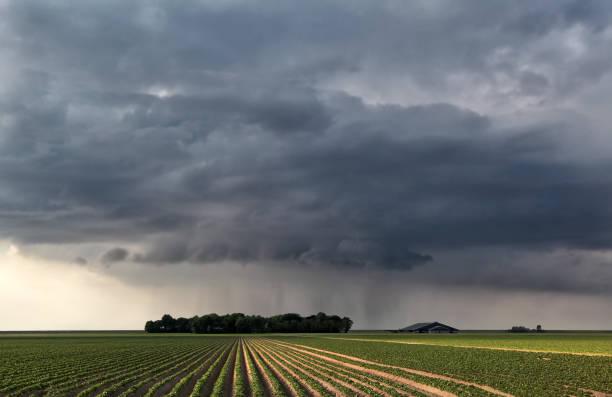Regent wolk over veld in zomer landbouwgrond foto