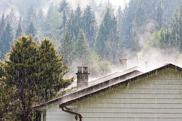 padające na dachu - deszcz zdjęcia i obrazy z banku zdjęć