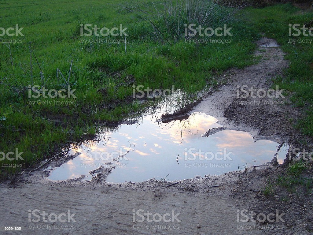 Rainwater puddle with twilight sky reflection royalty-free stock photo