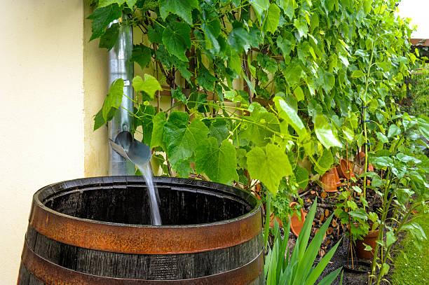 Von Regenwasser fällt ins Wasser barrel – Foto