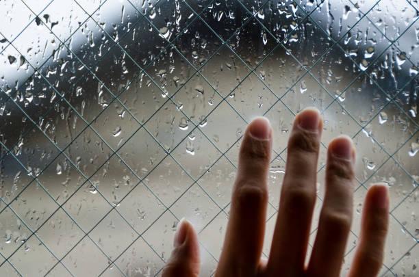 regnerischen nachmittag - regenzeit stock-fotos und bilder