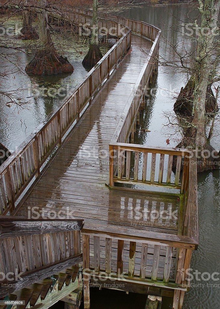 Rainy Boardwalk Over Shallow Lake stock photo