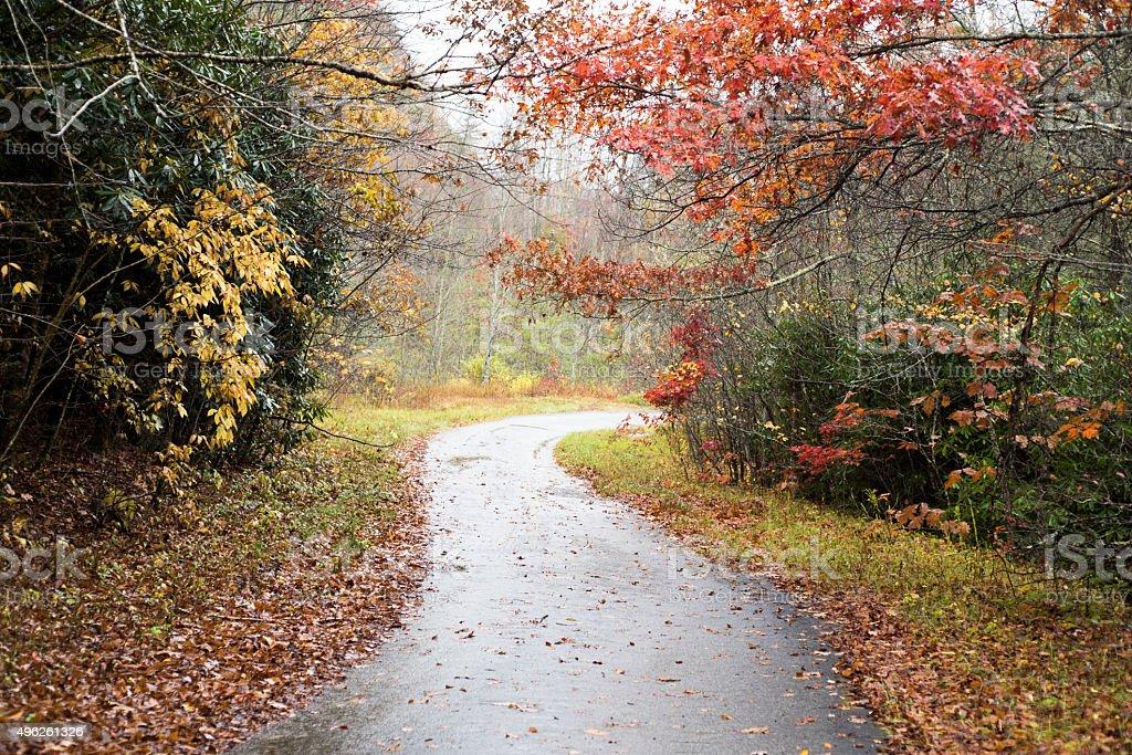 Rainy Day in October stock photo