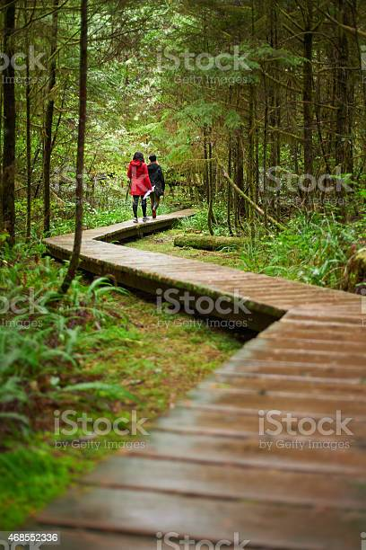 Photo of Rainy days- the perfect time for a walk in the woods