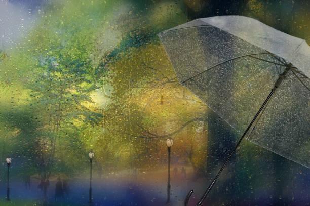 Rainy, foggy autumn park view. stock photo