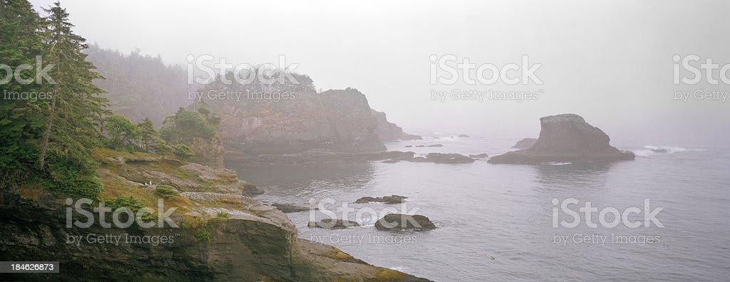 Rainy Morning, Cape Flattery, Washington stock photo