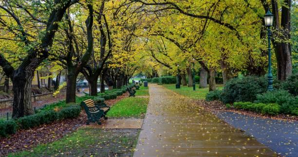 Rainy Park stock photo