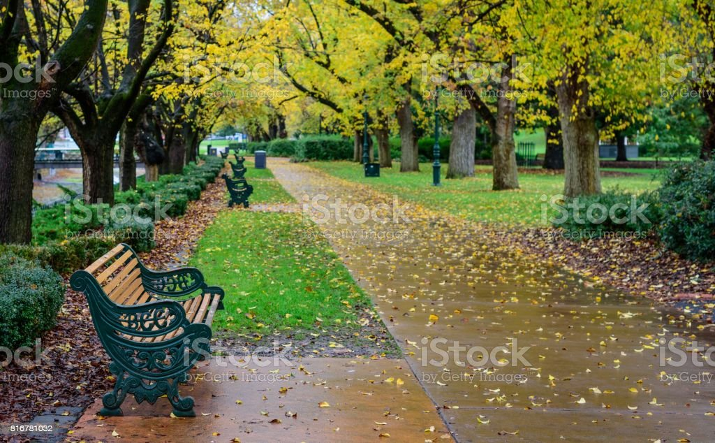 Rainy Park stock photo