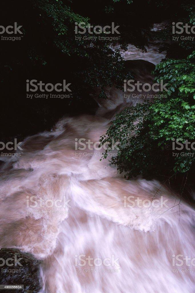 雨峡谷 ストックフォト