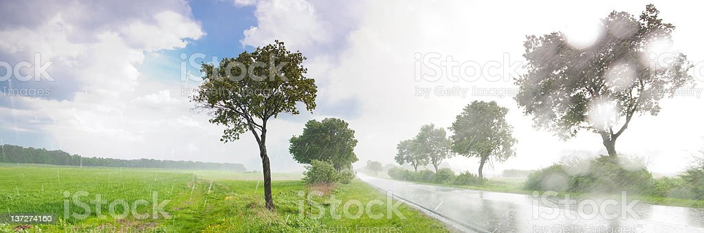 Rainy summer day in a country side - Royalty-free Agricultural Field Stock Photo
