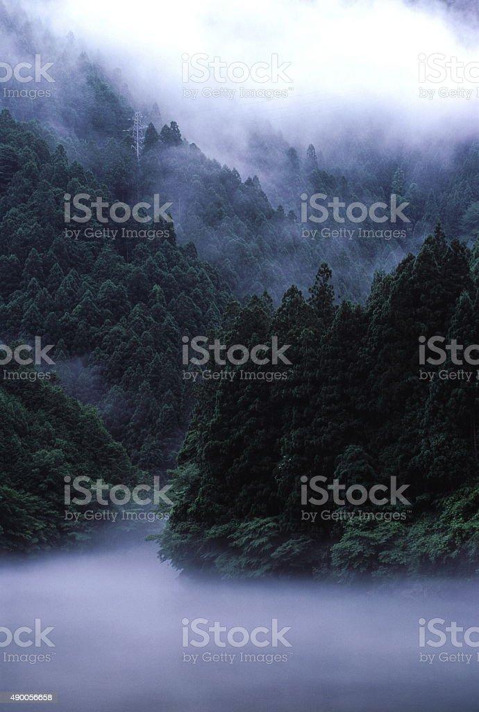 雨の谷 ストックフォト