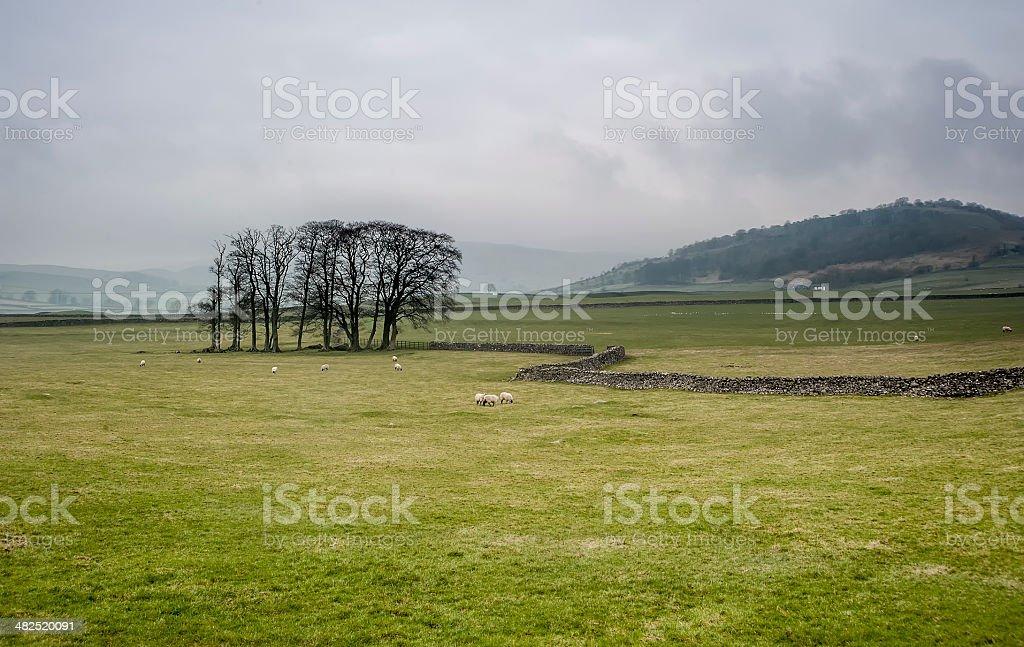 Rainy Yorkshire Dales Scene royalty-free stock photo