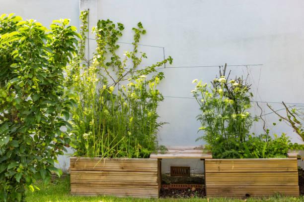 Erhöhtes Bett im Garten – Foto