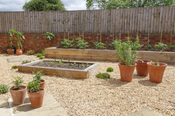 Raised beds in kitchen garden stock photo