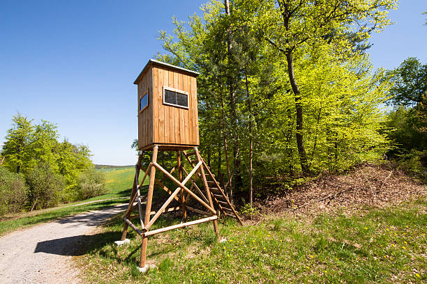 raised hide 3 high seat for hunter near a meadow and forest in summer, Germany hunting blind stock pictures, royalty-free photos & images