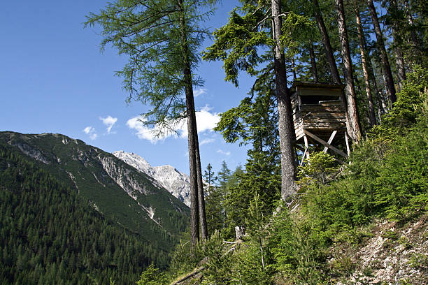 raised hide in the alps a hunting stance ovelooking the landscape in the austrian mountains hunting blind stock pictures, royalty-free photos & images