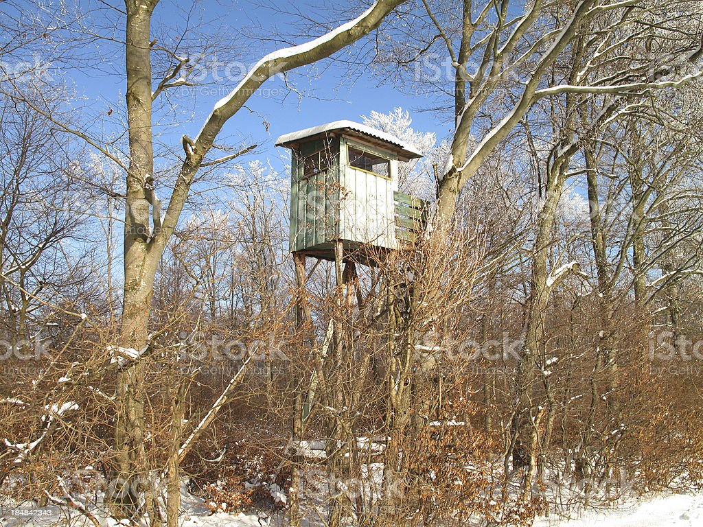 Raised hide in the wintry wood stock photo