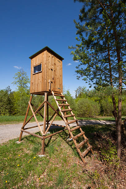 raised hide high seat for hunter near a meadow and forest in summer, Germany high seat stock pictures, royalty-free photos & images