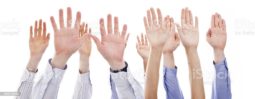 Raised human hands Many human hands of business people raising against the white background. Studio shot. Business Stock Photo