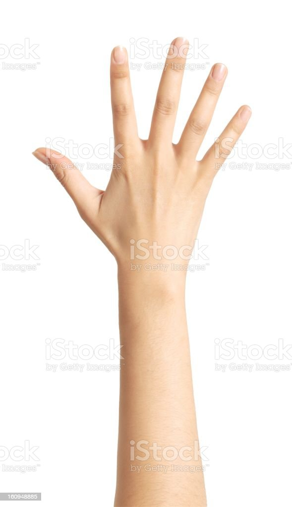 A raised isolated woman's hand stock photo