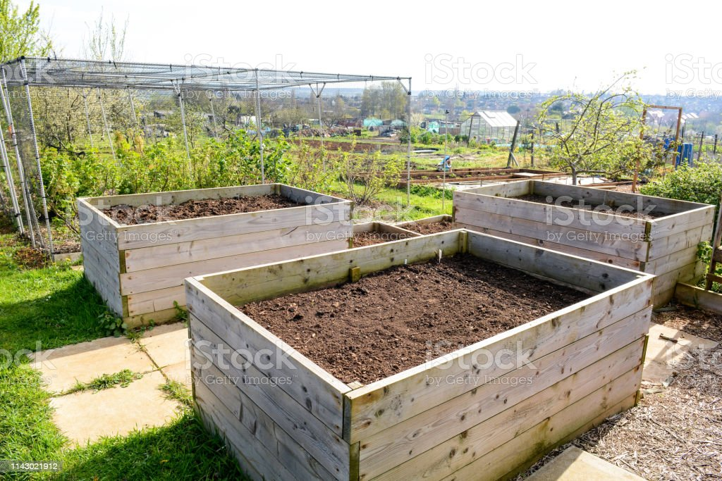 Raised Planter Box Stock Photo Download Image Now Istock