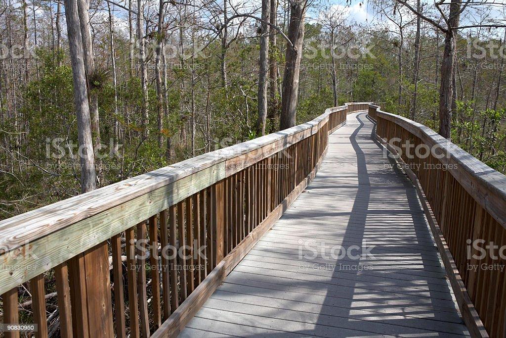 Raised wooden boardwalk royalty-free stock photo