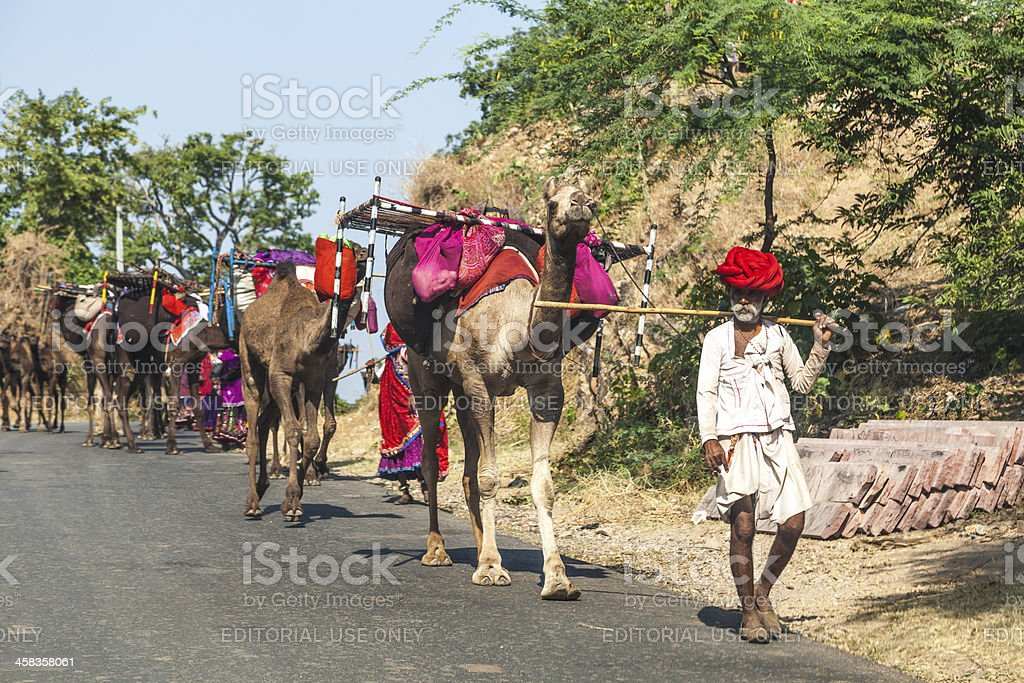 Rajasthani tribal man on the road with camels royalty-free stock photo