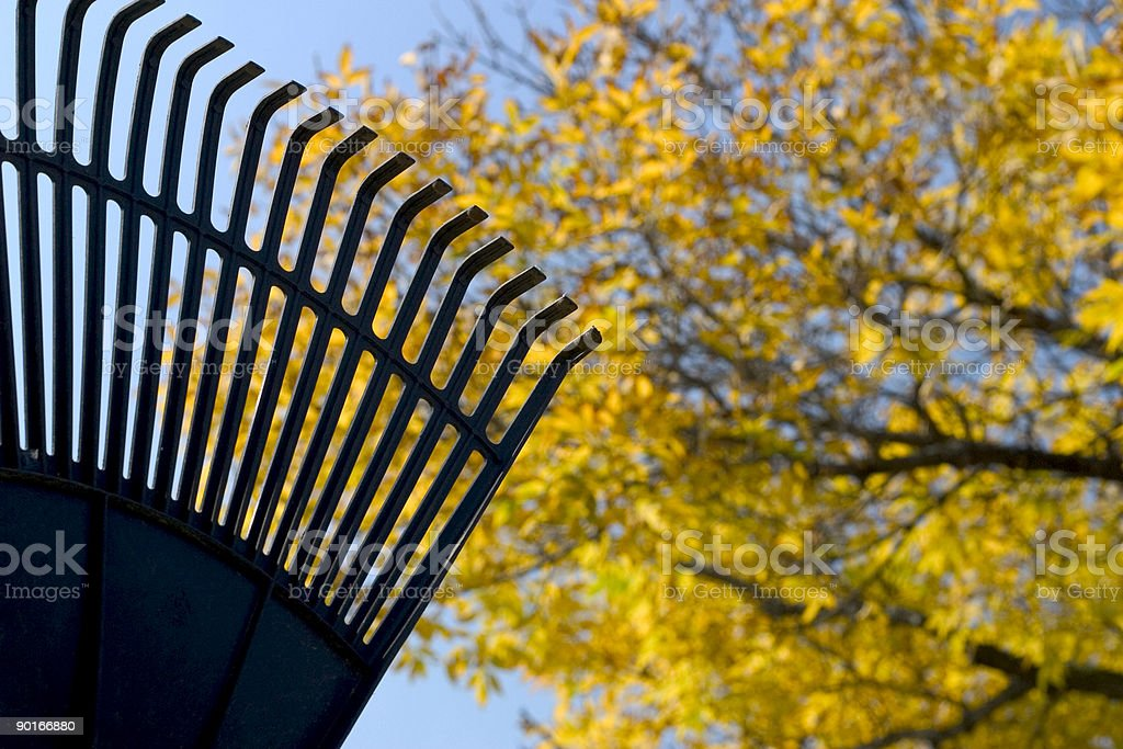 Rake the Yard royalty-free stock photo