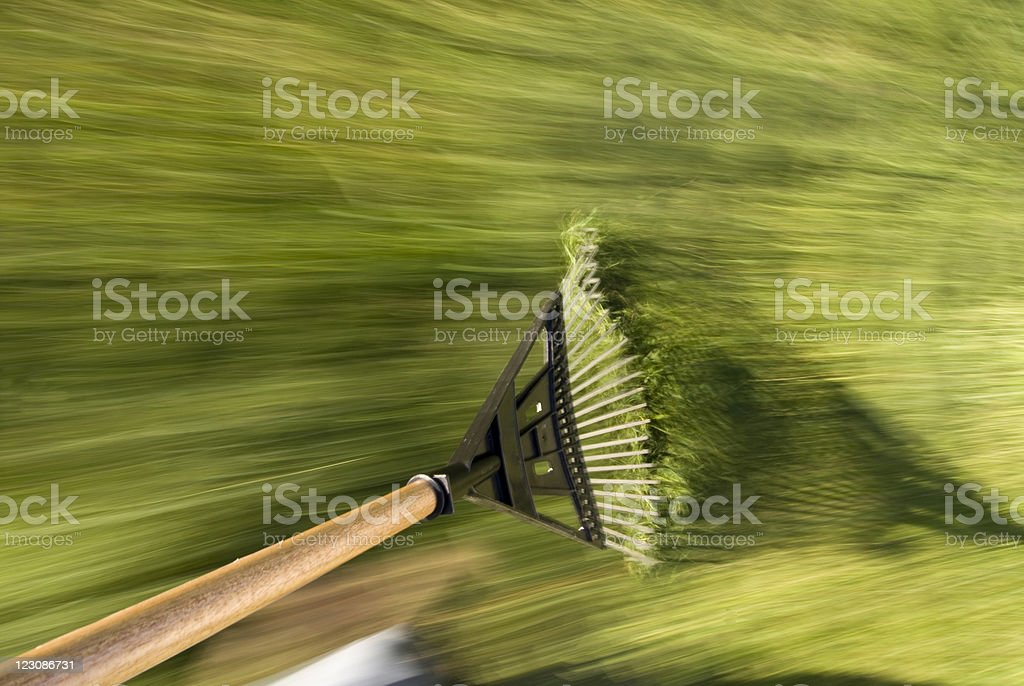 Raking Grass Clippings stock photo